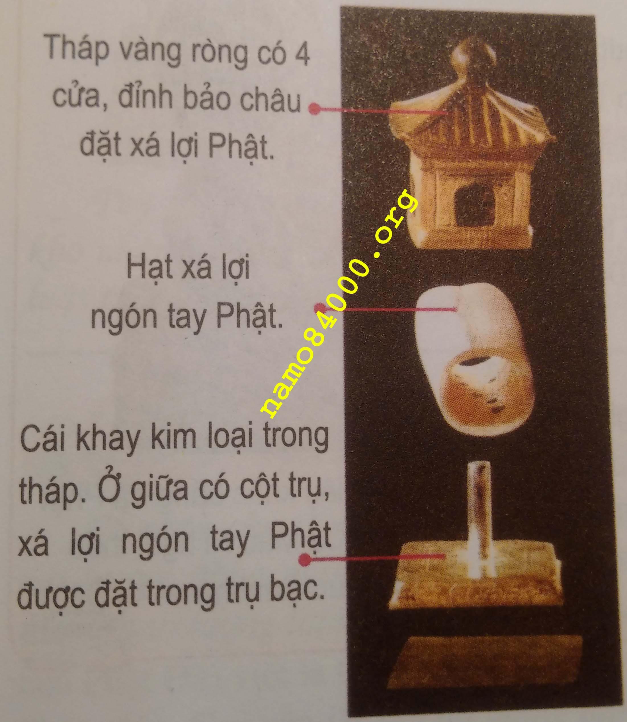 Hạt xá lợi ngón tay Phật đầu tiên tại chùa Pháp Môn của tỉnh Thiểm Tây - ảnh chụp từ Phật học vấn đáp - Thích Điền Tâm