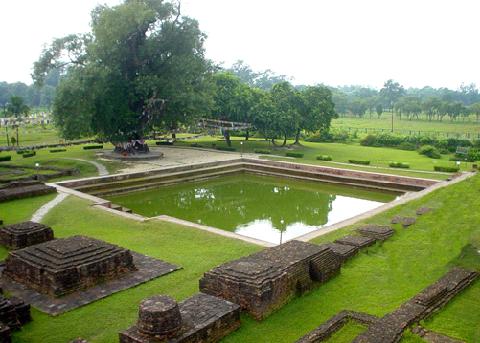 Cây Bồ Đề thiêng và giếng thiêng - Sacred Bodhi tree and the sacred pond