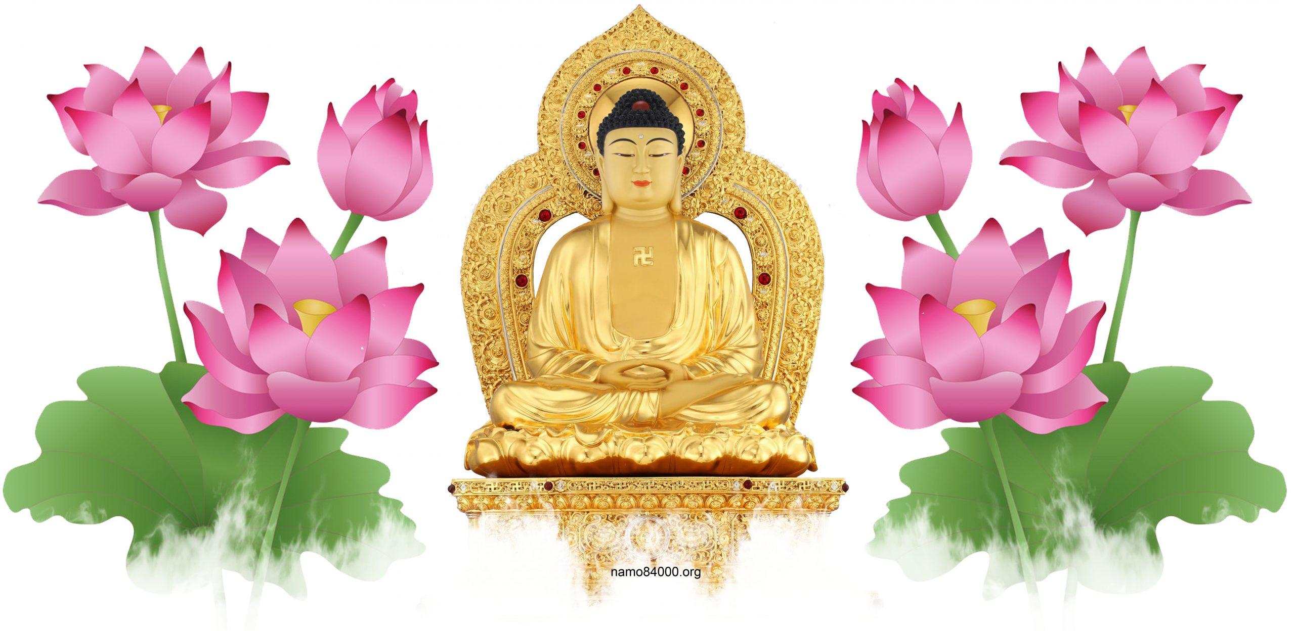Di Lặc Đương Lai Phật – Maitreya Honored Future Buddha – 當來下生彌勒尊佛