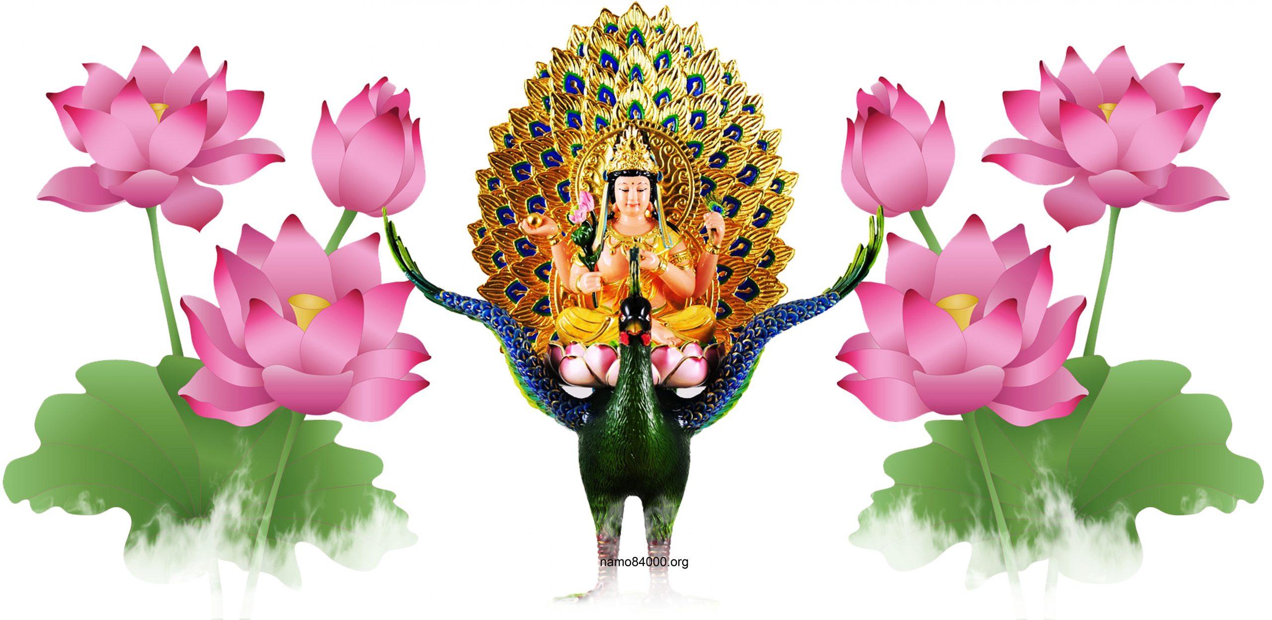 Khổng Tước Minh Vương Bồ tát – Mahamayuri Bodhisattva – 孔雀明王菩薩
