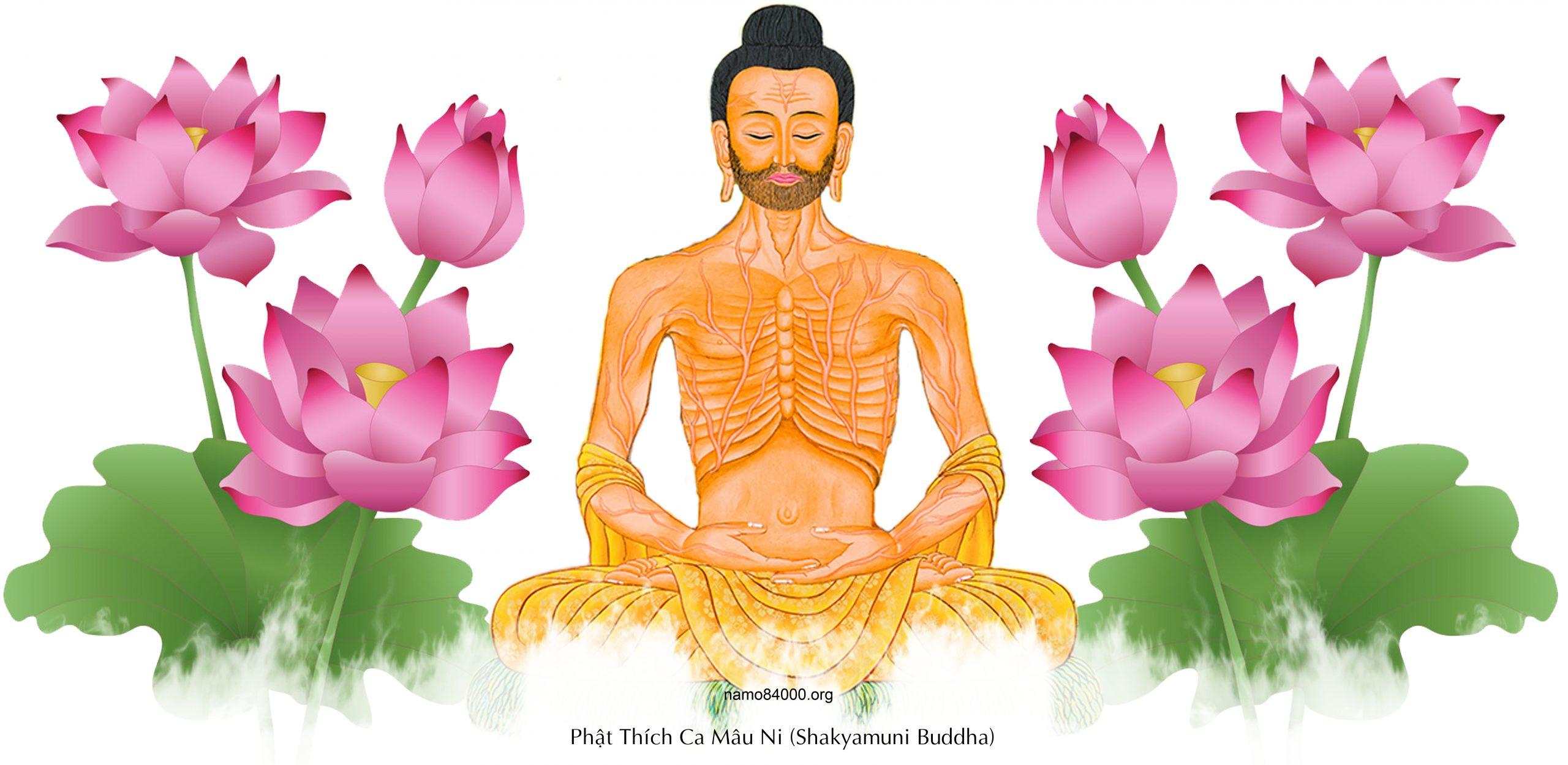 Nội dung Giới luật Phật giáo tại gia